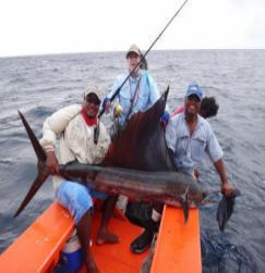Fishing_p
